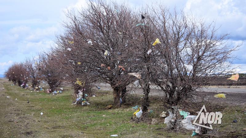 Власти Грузии собираются увеличить штраф за нанесение ущерба экологии