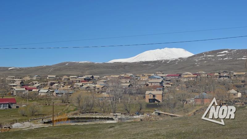 40 овец и 2 коровы погибли от холода в селе Эштии