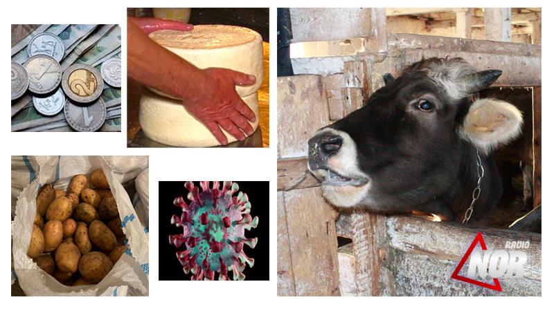 Обесцененная местная продукция в Джавахети и выросший интерес к сельскому хозяйству в период пандемии