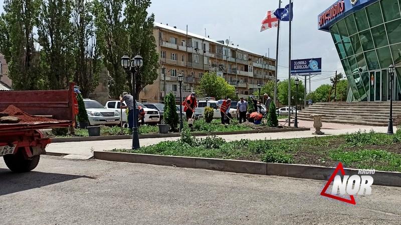 Продолжаются работы по озеленению города Ниноцминда