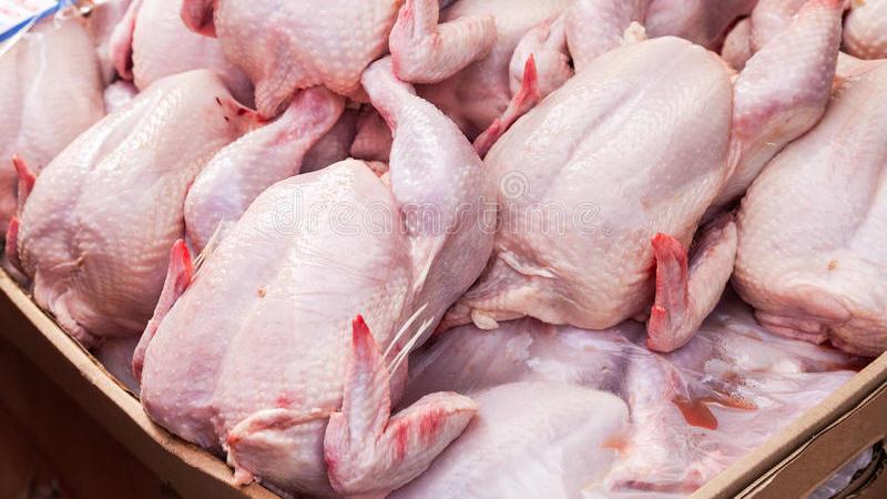 В партии импортированной в Грузию курятины обнаружены опасные для человека микроорганизмы